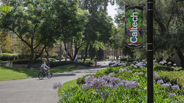 A cyclist and pedestrians on the Caltech campus, with flowers visible in the foreground.