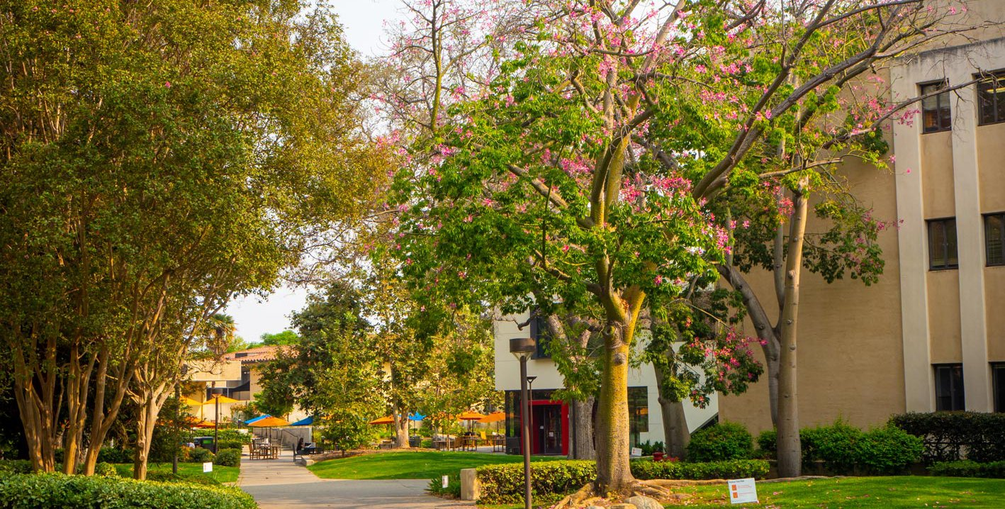 Photo of the Caltech campus including the Red Door Cafe