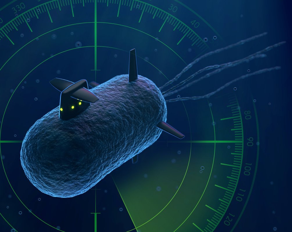 Artwork of cellular sonar