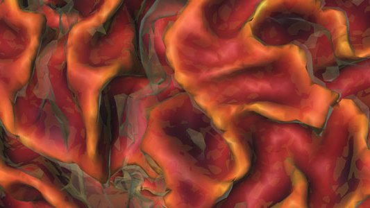 Detail of a rendering of a brain surface region from three-dimensional magnetic resonance images acquired from a healthy volunteer at the Caltech Brain Imaging Center.
