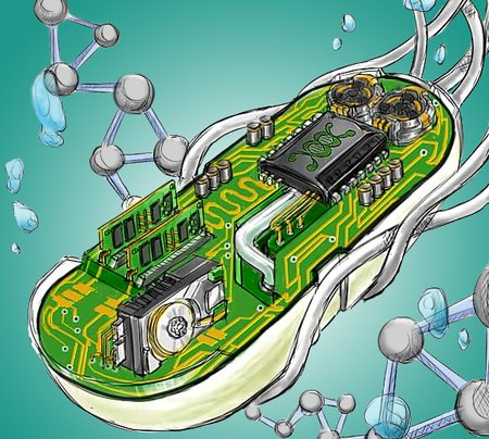 A drawing of a cell containing electrical components