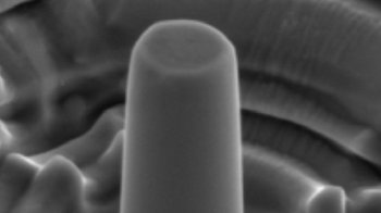 A scanning electron microscope image of one of the copper pillars used in the experiment.
