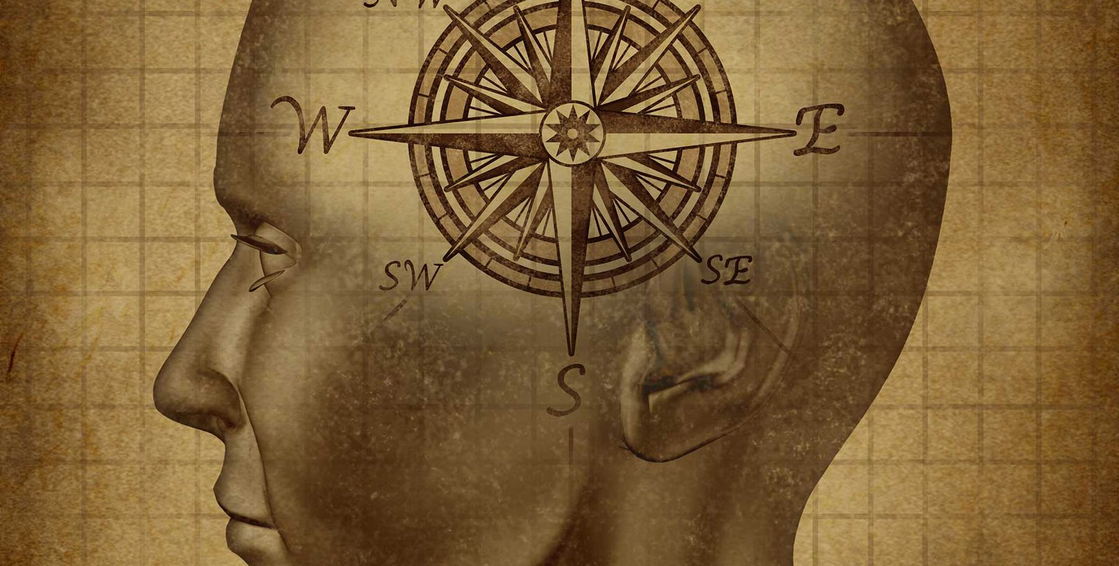 An illustration of a human with a compass superimposed