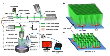 The photoacoustic microscopy apparatus used for imaging the metabolic rates of cancer cells.