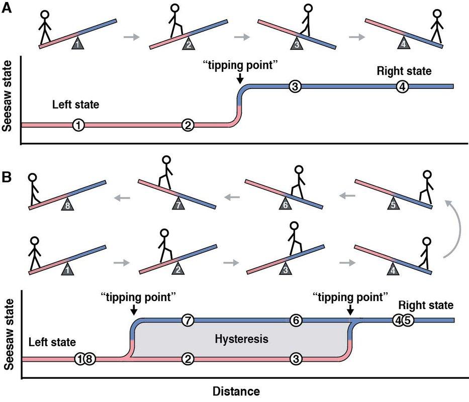 A diagram describing multistability and hysteresis.
