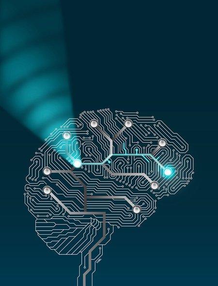 Artwork of brain circuits
