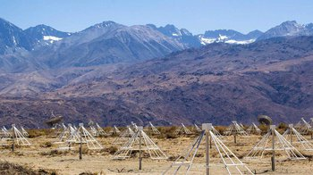 the Long Wavelength Array at Owens Valley Radio Observatory