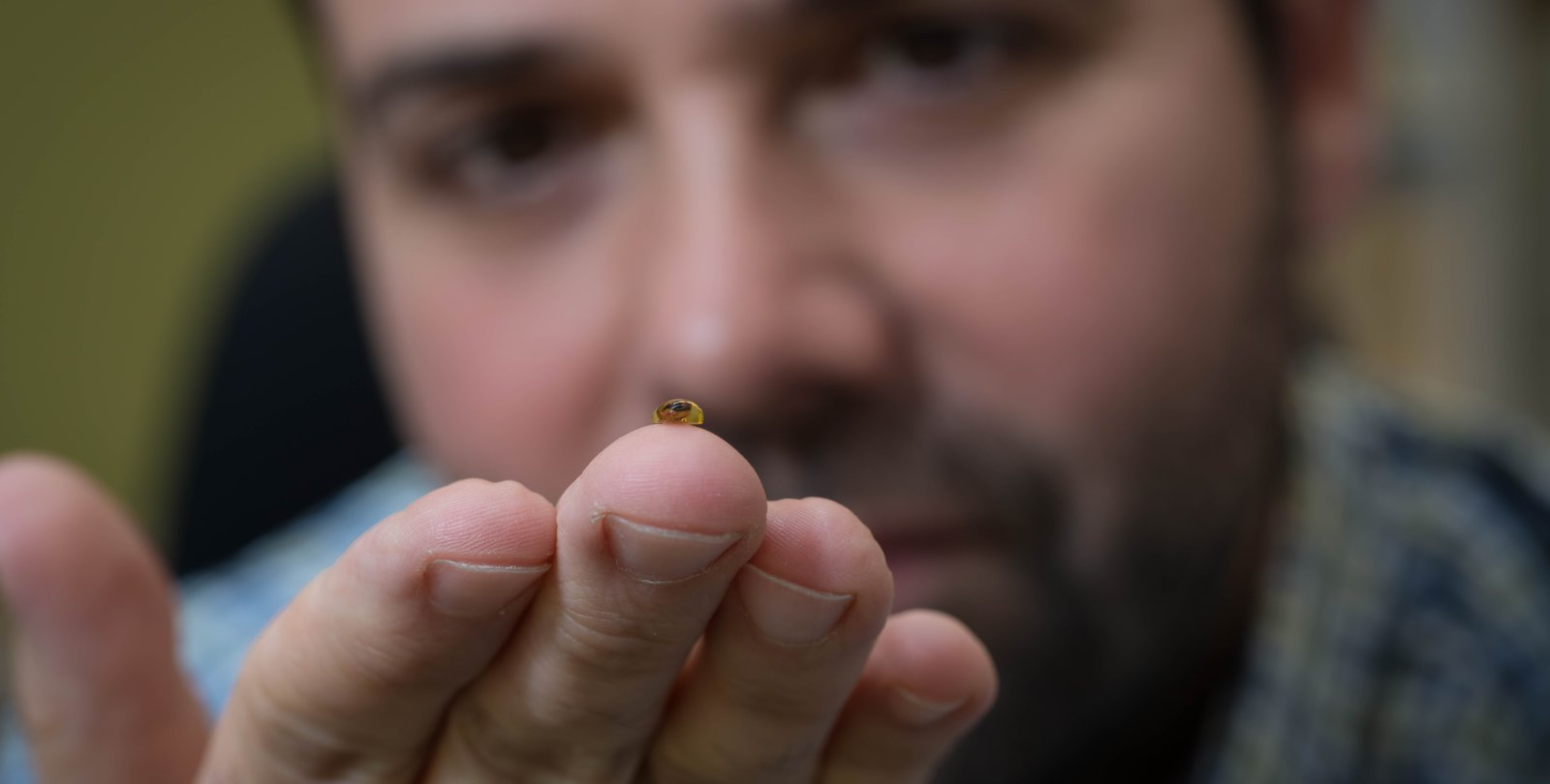 Joe Parker holds an ancient fossilized beetle