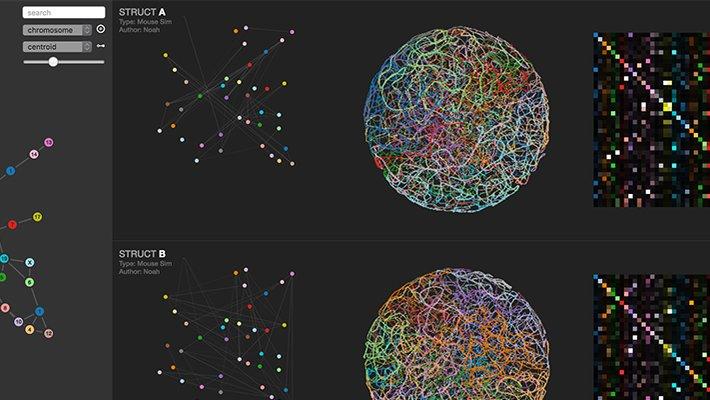 comparison-rows-genome