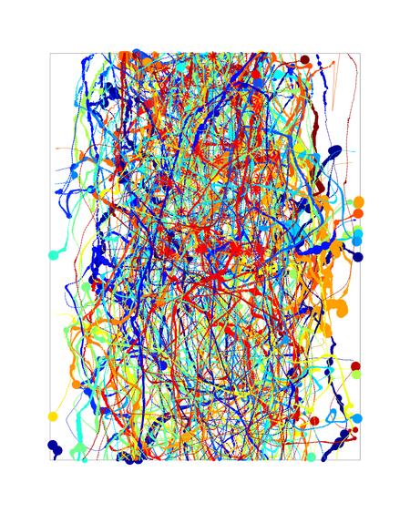 A tracing of flight trajectories of fruit flies.