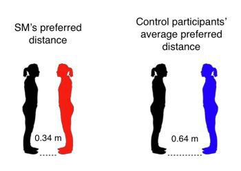 image showing interpersonal space distances